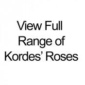 View Full Range