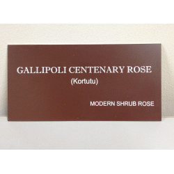 Gallipoli Centenary Rose Nameplate With Stake